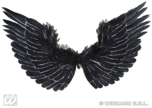 Ali da angelo nere