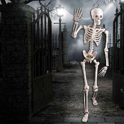 Decorazione scheletro
